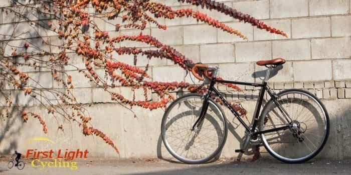 The 5 Best Hybrid Bikes Under 500 Dollars For Men And Women's [Reviews & Buying Guide]