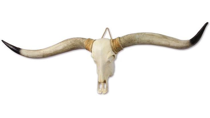 XL Longhorn schedel € 139.- www.deoudeschuur.com