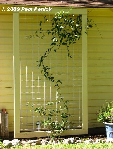 Framed in wood that's painted to match the siding, cattle panel makes a generous trellis against the garage.
