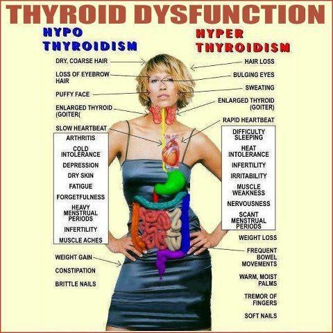 Signs of thyroid malfunctions