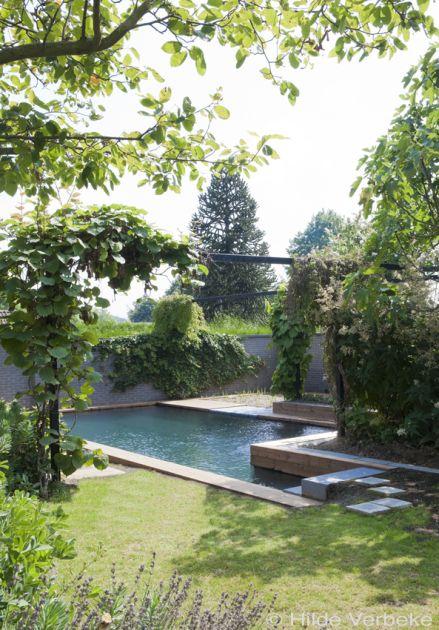 Een droom van een biologisch zwembad, zwemvijver met grijze liner ‹ De Mooiste Zwembaden