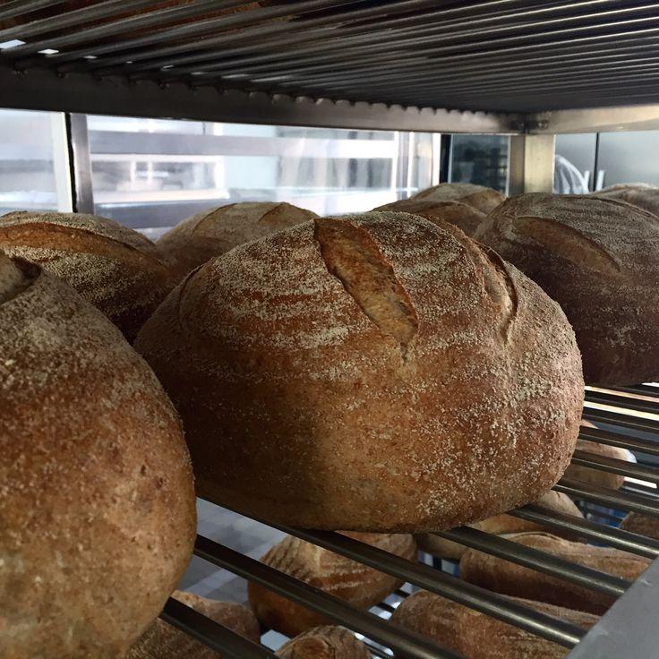 Panes de masa madre - Sourdough Bread - Sauerteigbrot #alucinabread Medellin