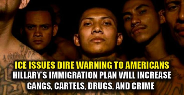 BREAKING : ICE Agents Warn Hillary's Immigration Plan will Unleash Cartels, Gangs, Drugs,(11/5/16)