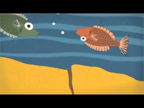 vanaf 0:23 Hoe ontstaat een tsunami? - YouTube