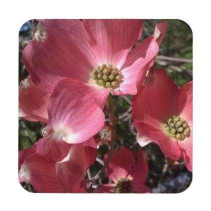 Dancing Pink Dogwood Coaster - home gifts cool custom diy cyo