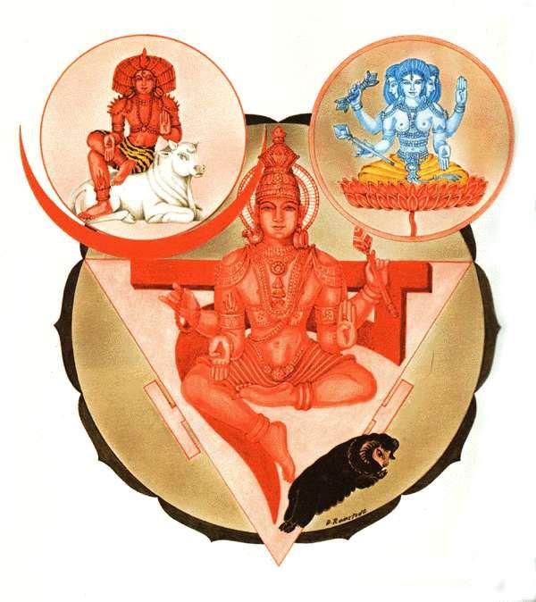 Daffodils, Yoga and the Manipura Chakra http://www.aurawellnesscenter.com/2014/04/15/daffodils-yoga-manipura-chakra/