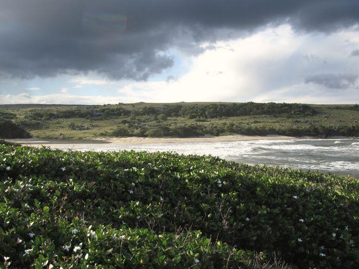 Mkambathi. Wild Coast. South Africa