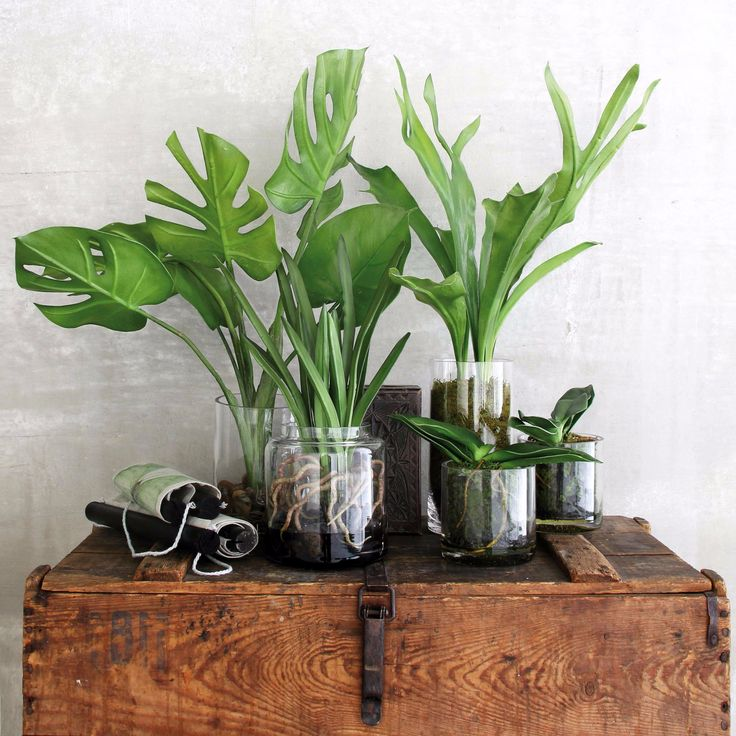 Kunstplanten: niet echt, wel mooi! #hkliving #kunsttak