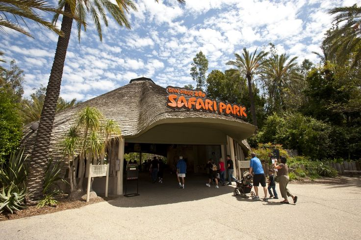 San Diego Zoo Safari Park - Buy Discount Tickets, Tours, and Vacation Packages