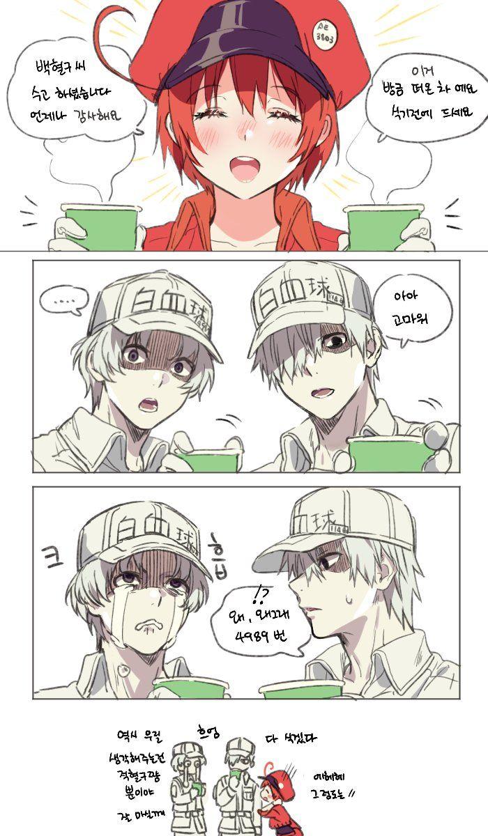 Tweet phương tiện bởi 양말가게 (mery__S2_) Twitter Anime