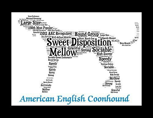 American English Coonhound | Personalize | Custom | Dog Art | Gift | Wall Decor | Memorial. American English Coonhound Art I created this artwork for all the animal lovers and I put extensive research into each one of my creations. Through this research, I make a one-of-a-kind illustration that showcases the unique traits of the American English Coonhound. Proudly display the characteristics of your American English Coonhound and its special place as a family member. Looking for a special...