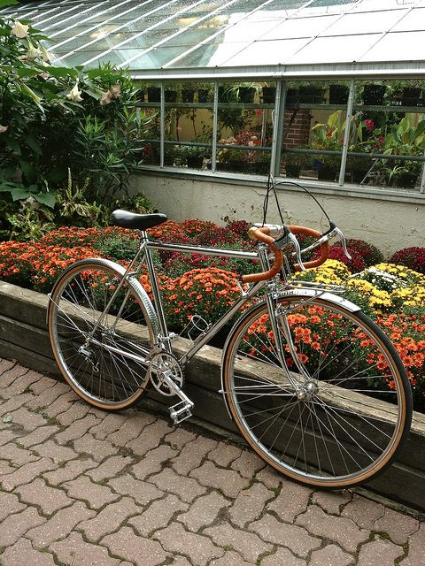 Edwards Gardens, great place to bike. You can bike down the Don Valley all the way to the Lake. by Eastboundtrain, via Flickr