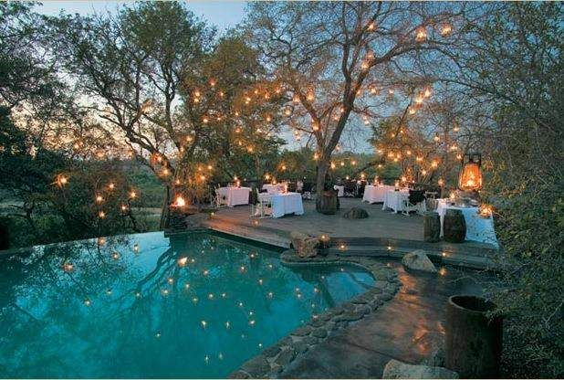 lights in trees AND a pool...??? Heaven.Lights, Dreams, Parties, South Africa, Trees, Places, Mason Jars, Pools, Backyards
