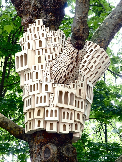 tree houses?