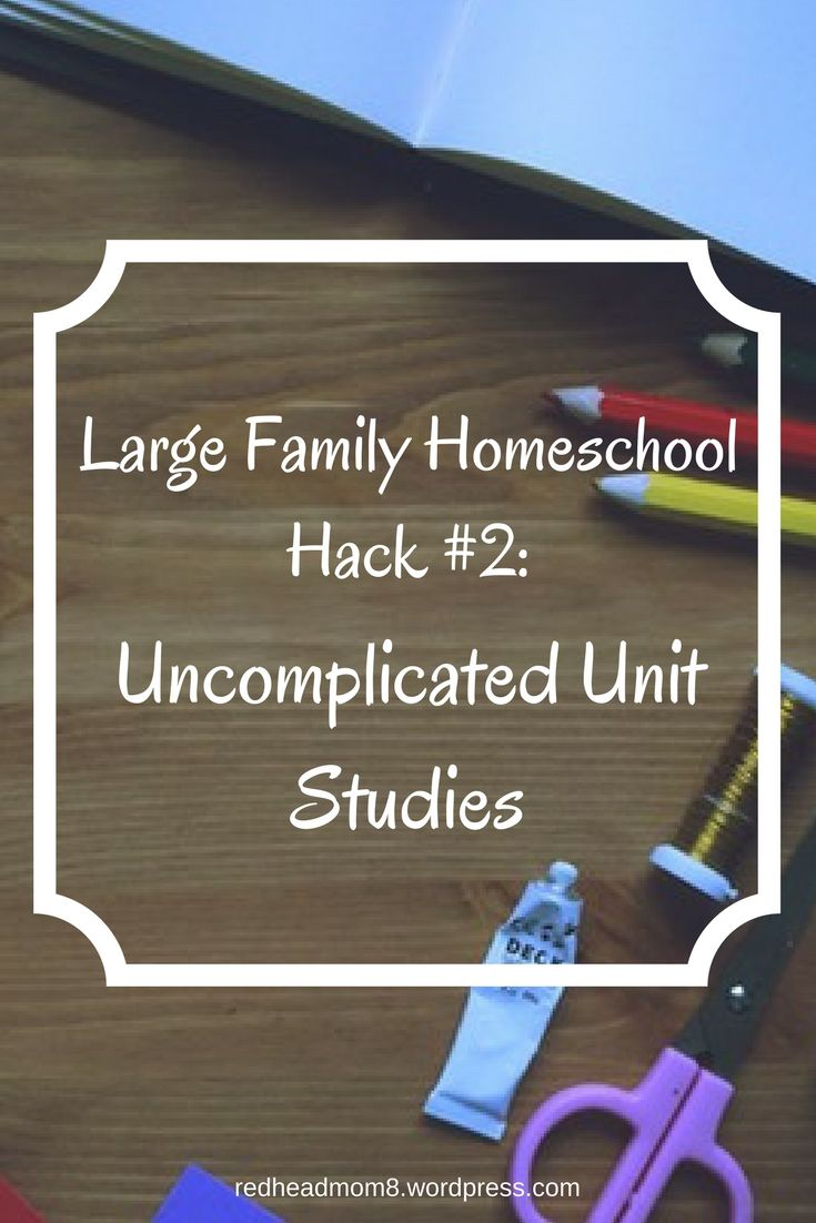 Welcome back for Day 3 of my How to Homeschool Multiple Children Without Going Crazyseries.I've really been having a lot of fun writing these posts, and it's my prayer that they will …