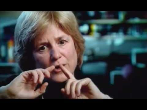 DNA   Episode 4 of 5   Curing Cancer   PBS Documentary - ✅WATCH VIDEO👉 http://alternativecancer.solutions/dna-episode-4-of-5-curing-cancer-pbs-documentary-2/     Deoxyribonucleic acid, or DNA, is a nucleic acid that contains the genetic instructions used in the development and functioning of all known living organisms (with the exception of RNA viruses). The main role of DNA molecules is the long-term storage of information. DNA is often compared to...