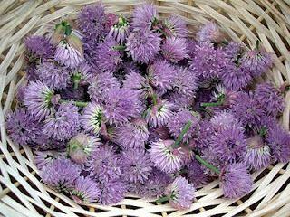 Flor de cebolinha - são excelentes para dar sabor e dar um toque acebolado. Flores de alho também são boas, dando um toque de alho à sua salada ou prato.