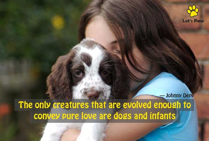 The only creatures that are evolved enough to convey pure love are dogs and infants. ― Johnny Depp