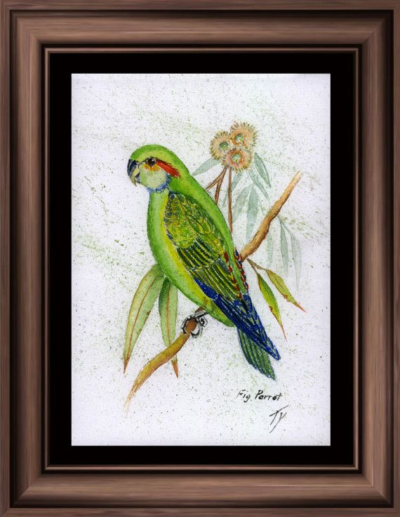Art Print 'Fig Parrot' by tervern on Etsy, $30.00