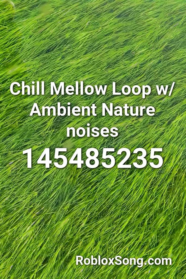 Chill Mellow Loop W Ambient Nature Noises Roblox Id Roblox