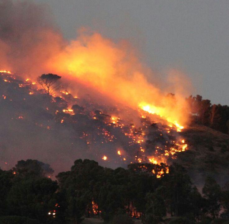Signal Hill burning