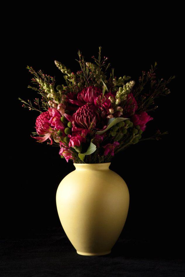 Tidal Bottega Beautiful Australian flowers... Warratah  Wax eye buds