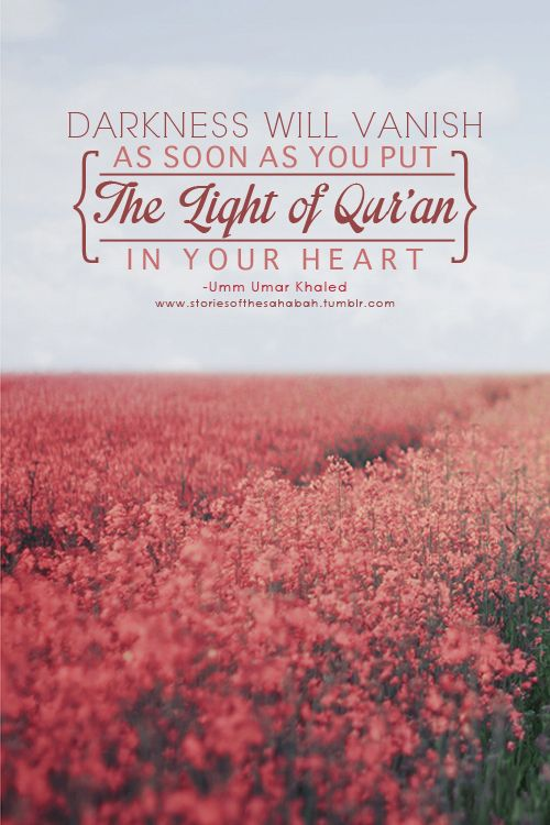 7 best Islamic Quotes images on Pinterest | Islamic quotes, Holy ...