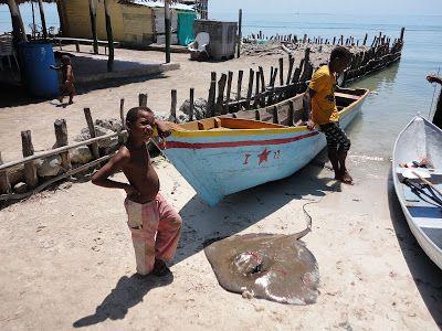 Cartagena de Indias & islas Caribe. Mucura