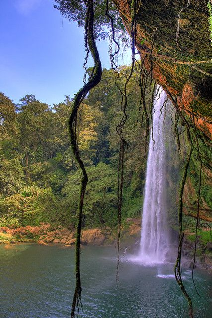 Misol-Ha Waterfall in Chiapas, Mexico (I have been to the jungles of Chiapas. There is so much pristine land, many, many waterfalls, so beautiful)