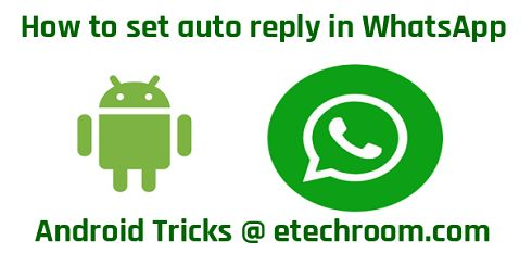 Set auto reply in WhatsApp