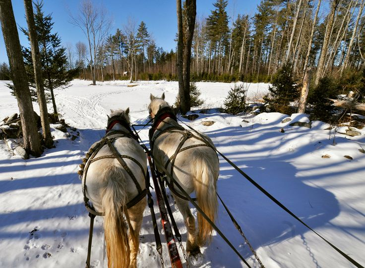 From sleigh rides to shopping, crafts to cuisine, you can find it during a weekend in this southern Vermont town.