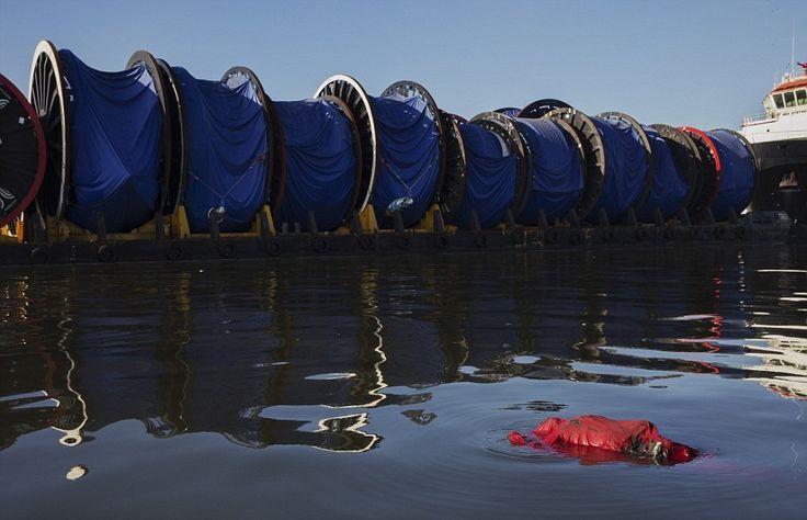 Ρίο: Πτώματα στα νερά που θα γίνουν οι αγώνες κολύμβησης και κωπηλασίας 📷