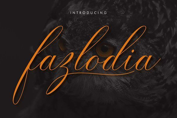 Fazlodia by Weasel Foundry on @creativemarket