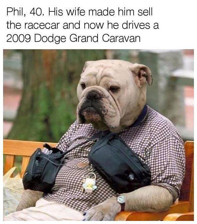 Poor Phil... Car memes #CarDoings #Cars #Automotive #Ferrari #BMW #M3 #M4 #M5 #Mercedes #AMG #Porsche #Audi #Honda #Ford #Volkswagen #Volvo #Kia #Mazda #Chrysler #Subaru #Lexus #Dodge #Hyundai #Chevrolet #Jeep #Nissan #Toyota #Tesla #Car #Supercar