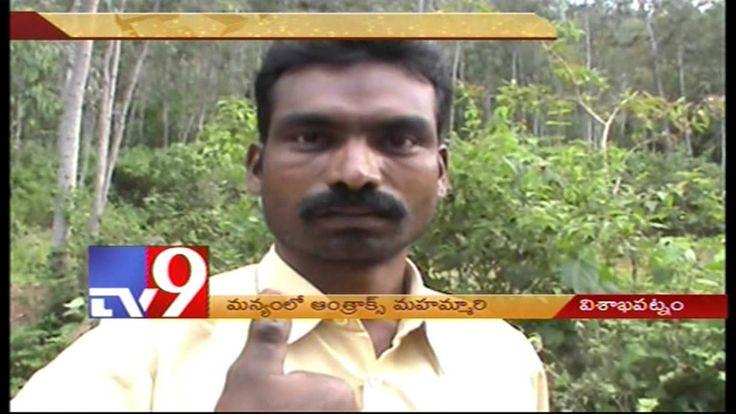 Anthrax disease terrorise Hukumpet residents in Visakha