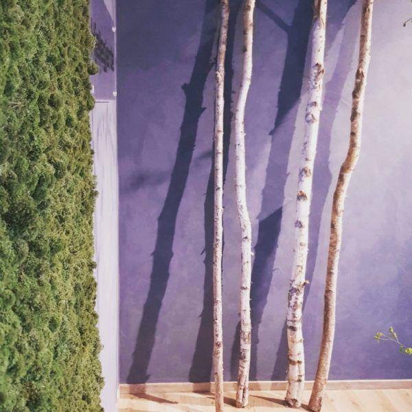 Mosevegg av bærekraftig reinlav er håndplukket og foredlet i Norge. Mosen er tilsatt miljøvennlige produkter som gjør den myk i minimum 10 år.