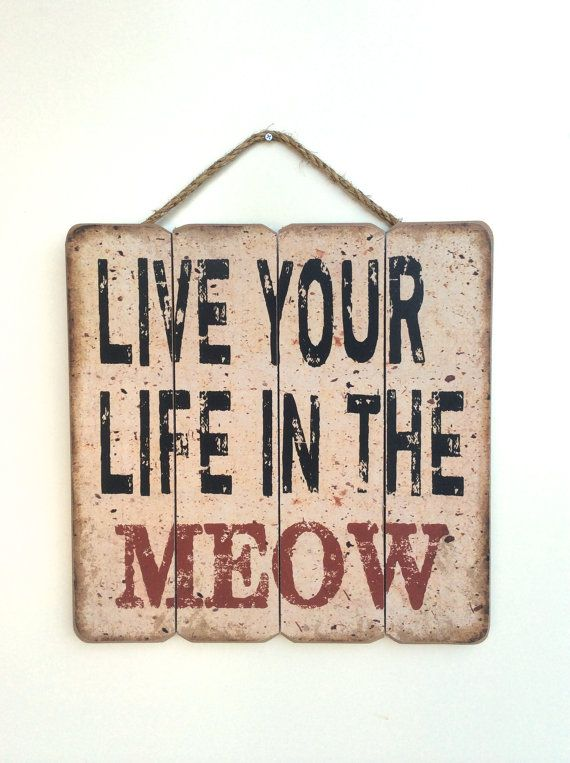 Cat Lover Wall Art Cat Sign Funny Cat Sign Cute by honeywoodhome