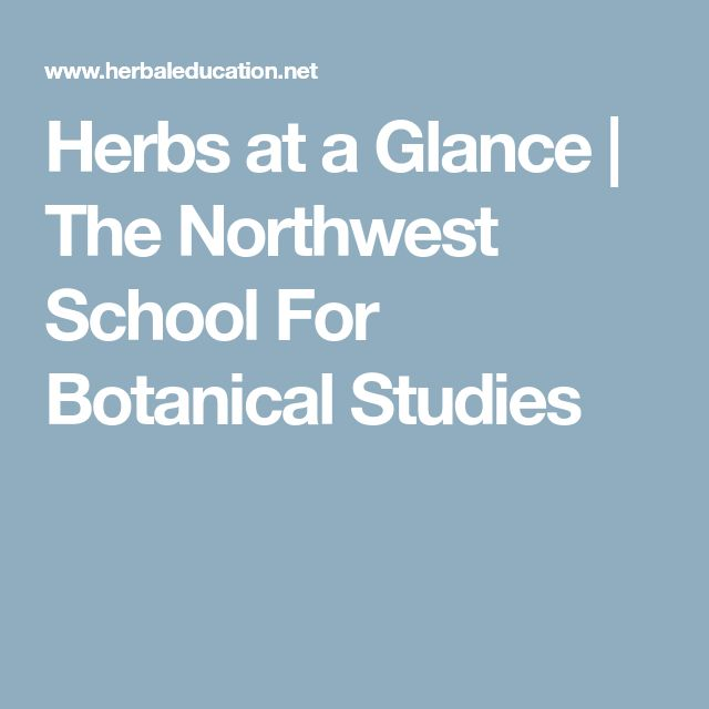 Herbs at a Glance | The Northwest School For Botanical Studies