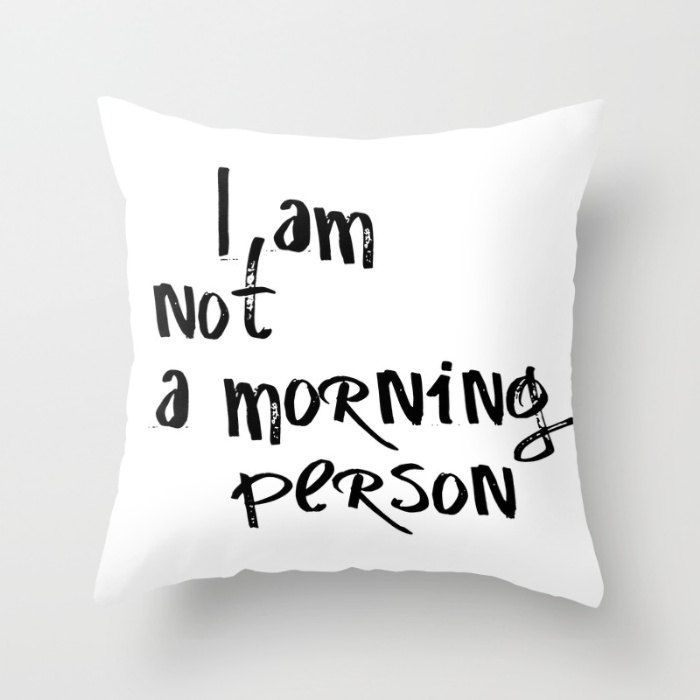 nice Funny Pillow Cases, Funny Pillow, Throw Pillow Cover, Pillows With Words, Teen Girl Room Decor, Cute Pillow Cases, Quirky Covers,Text Pillow by http://www.top-100-home-decor-pics.club/girl-room-decor/funny-pillow-cases-funny-pillow-throw-pillow-cover-pillows-with-words-teen-girl-room-decor-cute-pillow-cases-quirky-coverstext-pillow/
