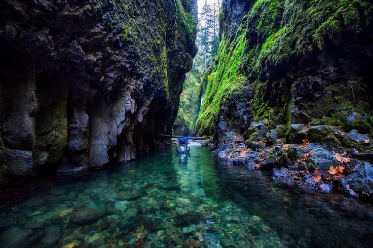 Estados Unidos es un país con muchos rincones naturales por descubrir. Uno de ellos es la Garganta de Oneonta, un tramo del río Columbia, en el estado de Oregón, donde la vegetación, las rocas y el agua forman un paisaje absolutamente espectacular, a veces luminoso, a veces más sombreado y casi tenebroso... De cualquier manera si te apasionan los paseos en plena explosión de naturaleza este será uno de tus lugares predilectos