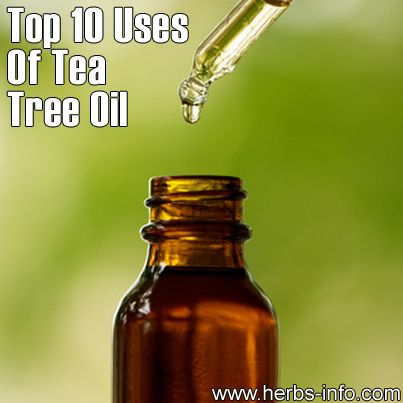 Blog » Top 10 Uses For Tea Tree Oil