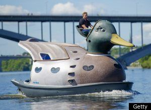 Quacker jack boat. Ducks are great swimmers — but they also make for great ...  oldstersview.wordpress.com