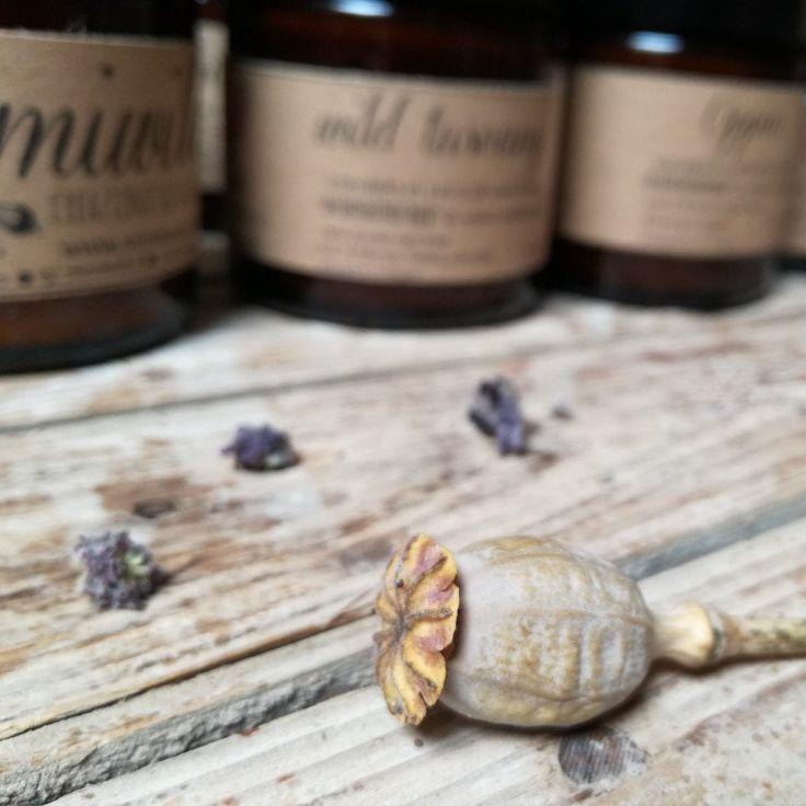 Prova le nostre 10 fragranze realuzzate per te! Oppio è una di queste, per farti cullare tra le braccia di Morfeo. Buonanotte!