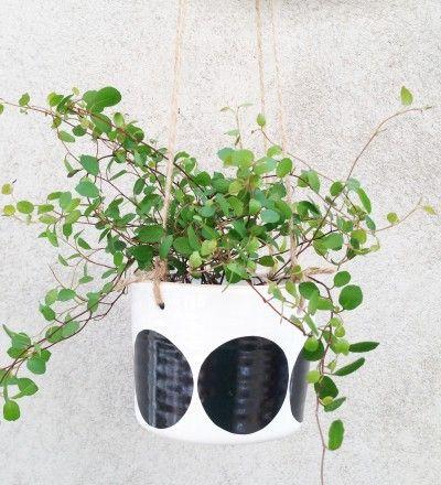 ULLA  - hanging pot