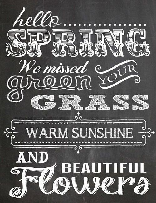 65 Spring Quotes and Sayings with Images Cute Spring Quotes