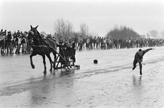 In 1982 was er een ijsrace over 1.000 meter tussen schaatser Kees Verkerk en het gelijknamige paard. Het dier won.