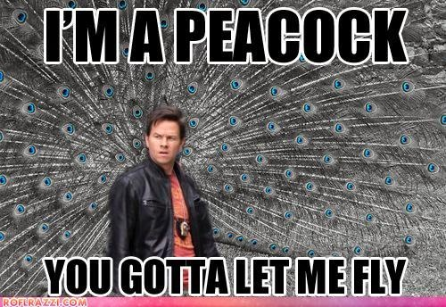 Mark Wahlberg; The Other Guys bahahahaha tim and i always say this.