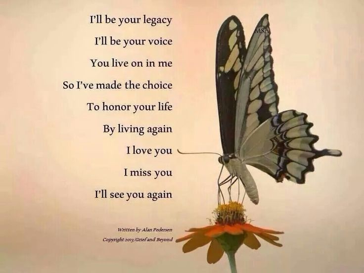 I'll be your legacy I'll be your voice You'll live on in me So I've made the choice To honor your life By living again I love you I miss you I'll see you again.