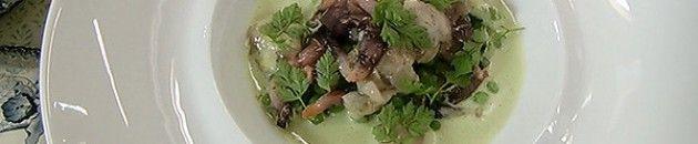 ROBINFOOD / Sopa de guisantes con percebes y ostras