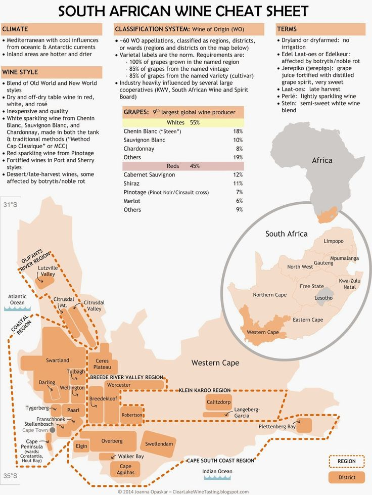 Clear Lake Wine Tasting: Wine Infographic: South African Wine Cheat Sheet